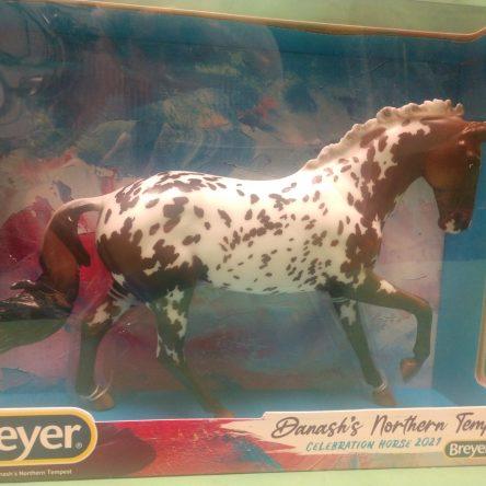 BF'21 Celebration Horse, Danash's Northern Tempest